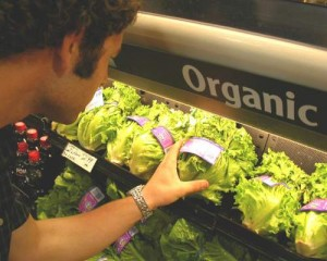organic_production1