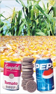 High Fructose Corn Syrup Production - a comprehensive view ...
